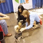 Meet the Breeds at AKC/Eukanuba National Championship 2012
