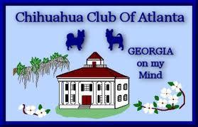 Chihuahua Club of Atlanta
