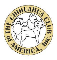 Chihuahua Club of America